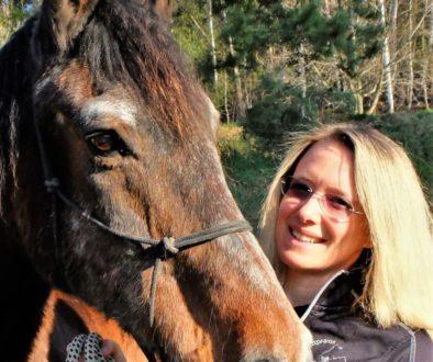 weiermayer und pferd